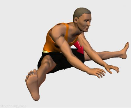 Estiramiento (stretching, streching) recomendado para:  futbol,  baloncesto,  voleibol,  danza,  artes Marciales,  gimnasia,  rugby,  balonmano,  boxeo,  futbol americano,  piernas,  aductor.