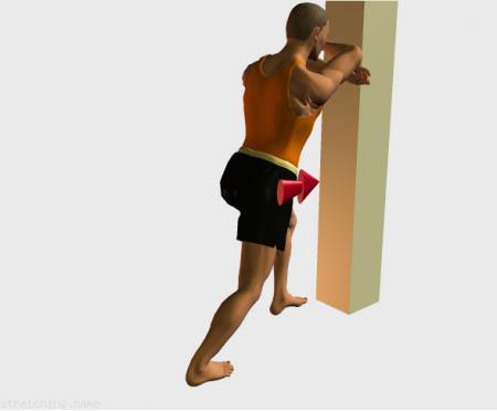 Estiramiento (stretching, streching) recomendado para:  futbol,  baloncesto,  ciclismo,  atletismo,  senderismo,  snowboard,  squash,  voleibol,  pesas,  natacion,  golf,  tenis,  triatlon,  danza,  gimnasia,  correr,  beisbol,  softbol,  balonmano,  kitesurf,  padel,  esgrima,  hockey,  piernas,  gemelo.