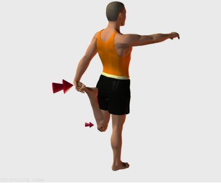 Estiramiento (stretching, streching) recomendado para:  ciclismo,  atletismo,  senderismo,  snowboard,  squash,  pesas,  tenis,  esqui,  triatlon,  correr,  kitesurf,  padel,  esgrima,  hockey,  piernas,  rapidos,  vuelo,  cuadriceps.
