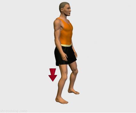Estiramiento (stretching, streching) recomendado para:  futbol,  baloncesto,  atletismo,  senderismo,  snowboard,  kayak,  voleibol,  golf,  esqui,  rugby,  balonmano,  futbol americano,  piernas.