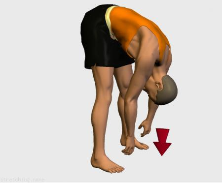 Estiramiento (stretching, streching) recomendado para:  futbol,  baloncesto,  ciclismo,  atletismo,  senderismo,  snowboard,  voleibol,  golf,  esqui,  correr,  rugby,  balonmano,  futbol americano,  piernas,  lumbares,  rapidos,  lumbalgia.