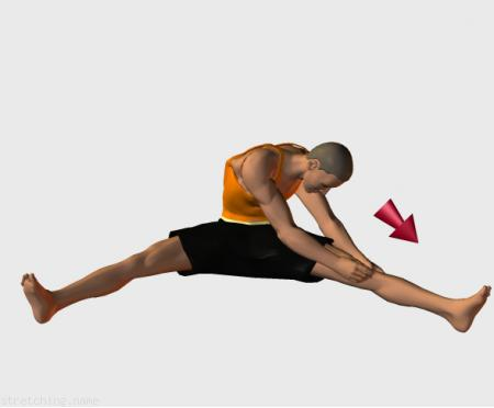 Estiramiento (stretching, streching) recomendado para:  danza,  gimnasia,  piernas,  aductor.