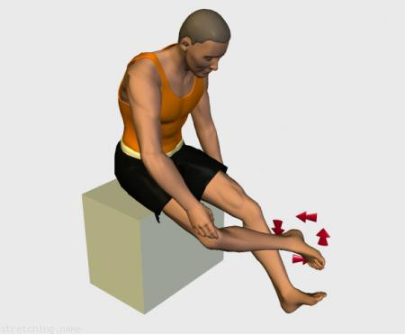 Estiramiento (stretching, streching) recomendado para:  boxeo,  pies y tobillos,  vuelo,  nuevos.