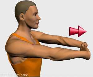 Estiramientos.es - Bíceps