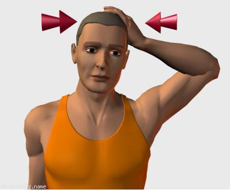 Estiramiento (stretching, streching) recomendado para: boxeo, cervicales, cervicalgia, isométricos, escaleno.
