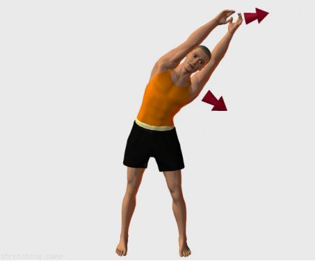 Estiramiento (stretching, streching) recomendado para: danza, gimnasia, béisbol, softbol, kitesurf, relajación de espalda, intercostales.